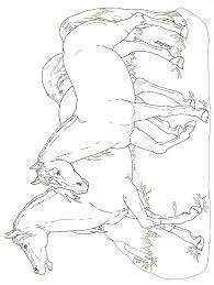 imprime le dessin à colorier d u0027animaux de la ferme