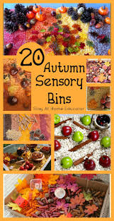 best 25 daycare themes ideas on pinterest daycare curriculum