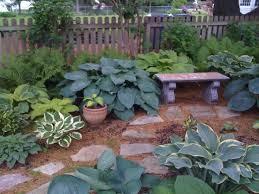 1396 best hostas images on pinterest hosta gardens shade plants