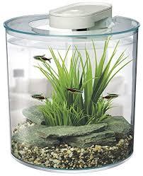 tropical fish tanks co uk