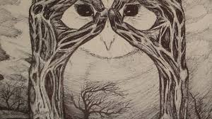 owl in a tree drawing notes from the room the walk