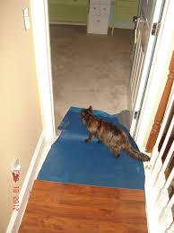 Lowes Floating Floor Floors Lowes Pergo Flooring Floating Floor Lowes Lowes