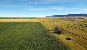 montana ranches farms and recreational properties for sale swan