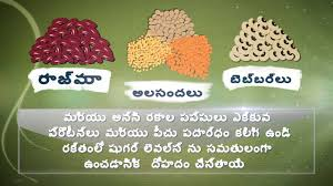food for diabetes telugu youtube