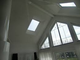 Ceiling For Living Room by Ceiling Design Unfinished Velux Skylight Sizes For Living Room