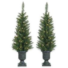 buy pre lit potted trees from bed bath beyond