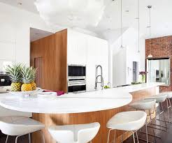 Contemporary Kitchen Cabinets Contemporary Kitchen Ideas