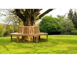 tree seats tree benches circular tree seats round benches