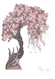 radom cherry blossom by isleotto on deviantart