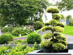 Garden Shrubs Ideas Front Garden Shrubs