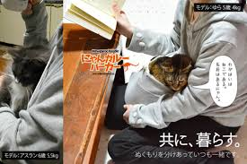 sweatshirt that gives your pet a special cuddle pouch is half cat