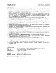 Resume Examples It by 100 Resume Of Sap Fico Consultant Resume Examples For