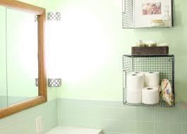 Painting Bathroom Ideas Bathroom Diy Storage Baskets Cleaner Vinegar Dish Soap Cabinet