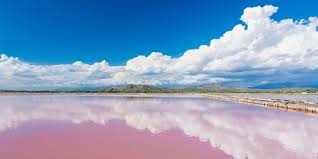 Pink Lake Discover Senegal Overview