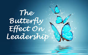 butterfly effect synergy cmc complete management consulting