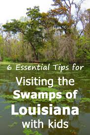 Louisiana how does sound travel images Visiting the swamps of louisiana with kids 6 useful tips trip memos jpg