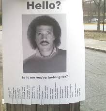 Hello Is It Me You Re Looking For Meme - austin kleon hello is it me you re looking for flyer print
