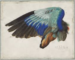 albrecht dürer master drawings watercolors and prints from the