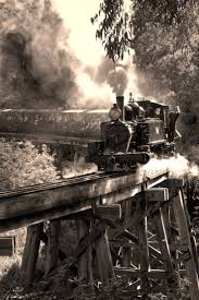 Trains In America Best 25 Steam Train Rides Ideas On Pinterest Ride On Train