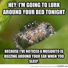 I Saw A Spider Meme - best 25 spider meme ideas on pinterest funny spider memes