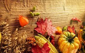 fall pumpkins wallpaper wheat corn and pumpkin autumn fruits