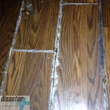 mold remediation services disaster plus charleston sc
