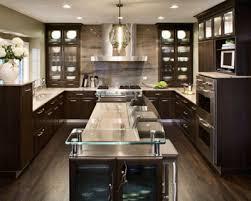 Contemporary Kitchen Ideas Modern Contemporary Kitchen Entrancing Contemporary Kitchen Home