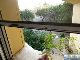 Where Do Mosquitoes Hide In Your Room by Mosquitoes On Crete