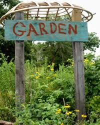 Ideas For School Gardens School Garden Wizard Home