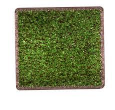 Grass Area Rug Grass Area Rug Outdoor Home Design Ideas