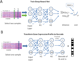 representing high throughput expression profiles via perturbation