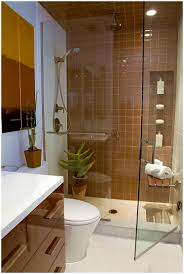 Bathroom Ideas Shower Only Bathroom Small Bathroom Design With Shower Only Bathroom
