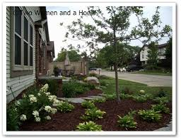 ornamental trees for the landscape two and a hoe
