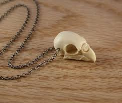 bird skull necklace images Bird skull necklace all collections of necklace jpg