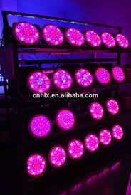light purple porsche 90w apollo 2 led grow light types of green vegetables red chili