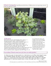 indoor lighting watering houseplant pruning tools what u0027s up