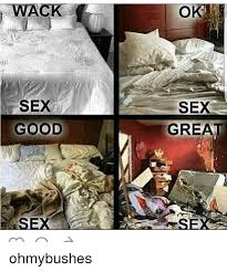 What Is Sex Meme - sex good sex great ohmybushes meme on sizzle