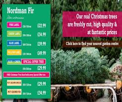 prices of trees lizardmedia co