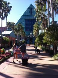 Hit The Floor Ratings - book walt disney world dolphin orlando hotel deals