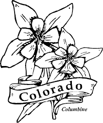 State Flower Of Colorado - 50 state flowers coloring pages for kids