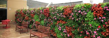 vertical garden livewall