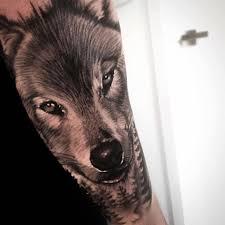 wolf on arm