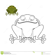 frog coloring book funny amphibious reptile animal from swamp