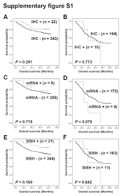 her2 status in colorectal cancer its clinical significance and