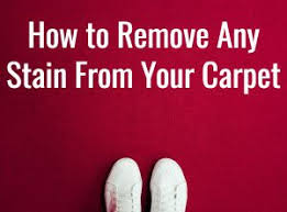 Vanish Oxi Powerspray Carpet And Upholstery Stain Remover Carpet Cleaning Products The Guide April 2018