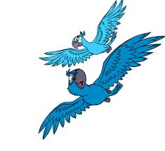 image rio coloring pages blu jewel gif rio wiki fandom