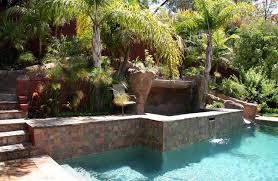 Backyard Pool With Slide Pool With Hillside Slide And Raised Spa Tropical Landscape