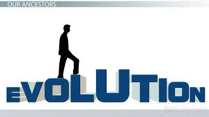 human evolution lesson for kids timeline u0026 stages video