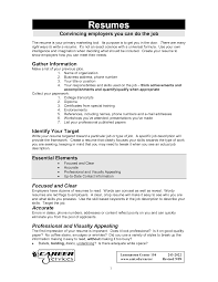 Basic Resume Format Examples by How To Make A Basic Resume