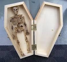 halloween coffin ebay